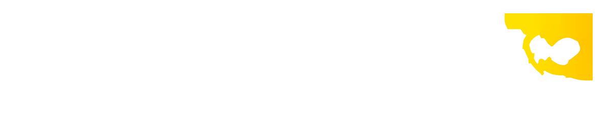 Alcaldia de Aguadas 2020